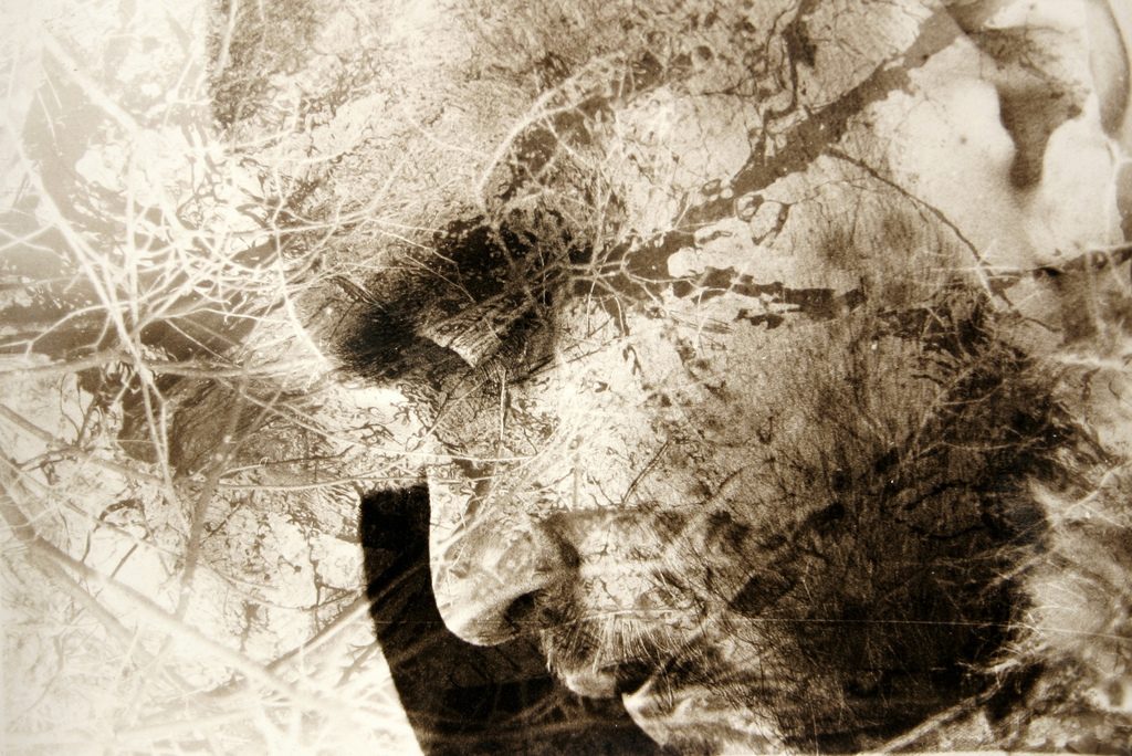 Nicolas Quaegebeur (Ikhaan) - Double exposure - 2009